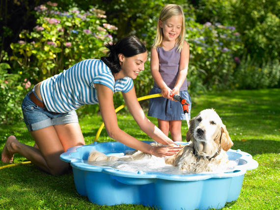 Mother and daughter washing the dog